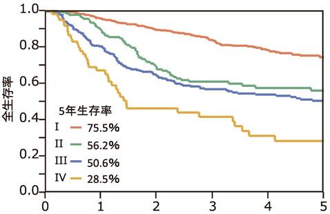 図5:食道癌手術症例の治療成績