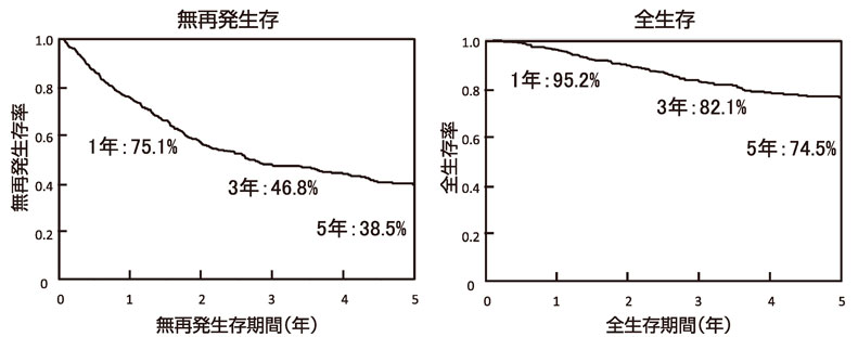 図3:初発肝細胞癌の切除後予後(n=523)