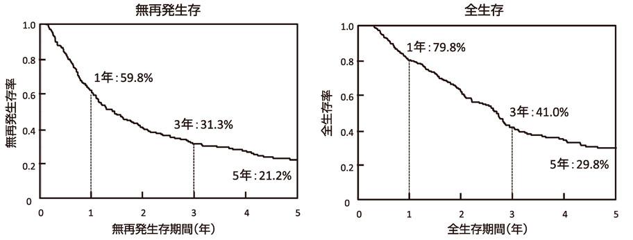 図11:膵癌の予後曲線(n=253)