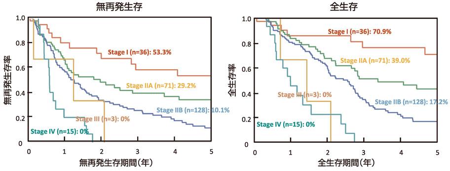 図12:膵癌のStage別予後曲線(n=253)
